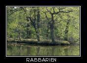 Fischteiche in Riddagshausen